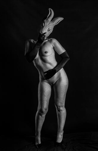 silly rabbit artistic nude artwork by photographer thom peters photog