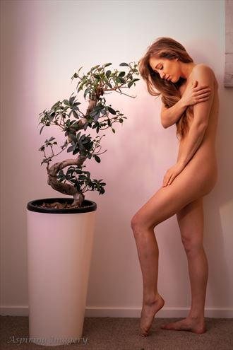 simple grace no 1 artistic nude photo by photographer aspiring imagery