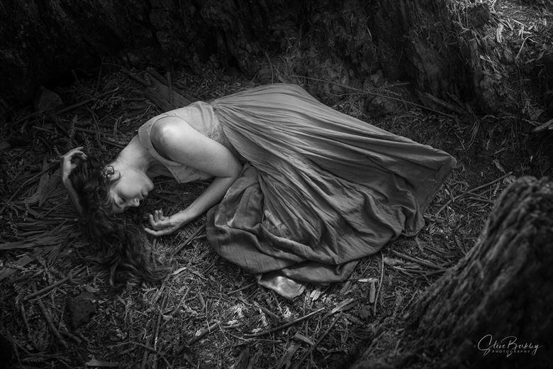 sleeping beauty nature photo by photographer steve berkley