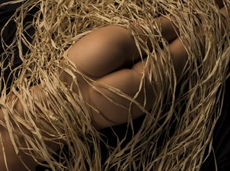 smooth lines artistic nude photo by photographer j welborn