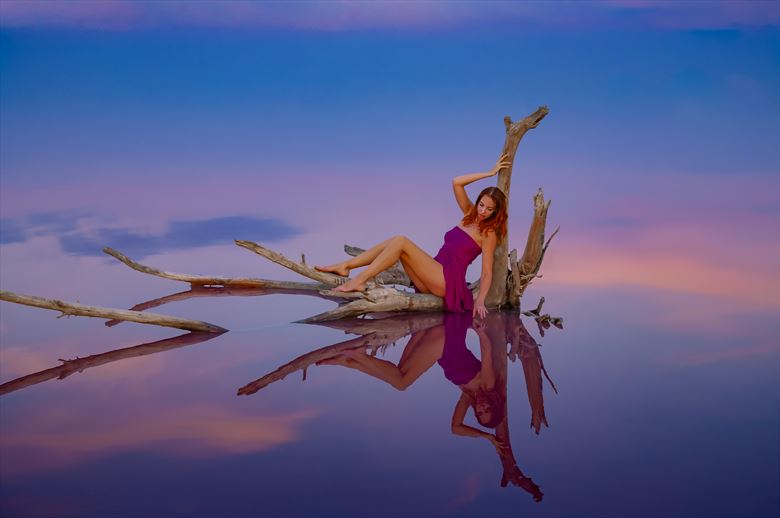soaring in the sky on the own reflection nature artwork by photographer gino m%C3%BCnnich