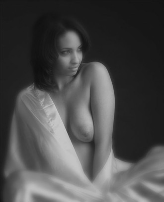 soft Artistic Nude Photo by Photographer Bob Simpson