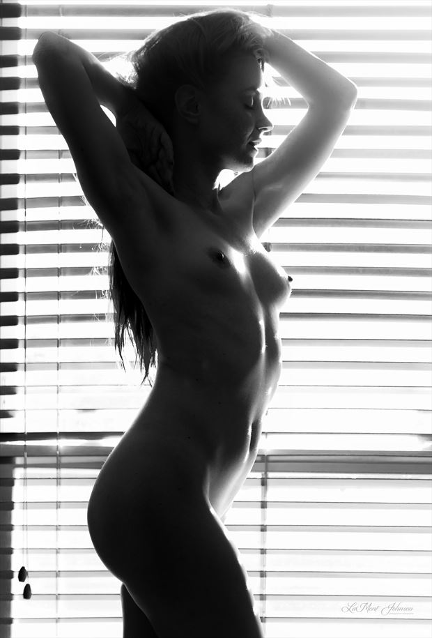 soft light by the window artistic nude photo by photographer lamont s art works