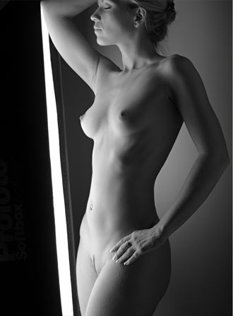 softbox artistic nude photo by photographer milt reeder