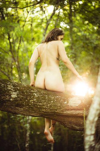 sol artistic nude photo by photographer rhett
