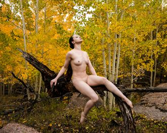 solenne in the aspens artistic nude photo by photographer mtnco