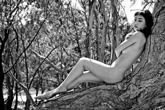 sonya reclining on tree artistic nude photo by photographer john matthews
