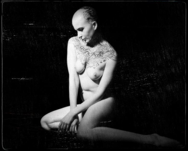 sp 231 artistic nude photo by photographer servophoto