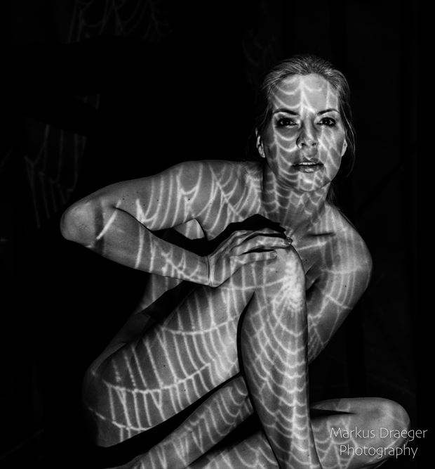 spiderwoman artistic nude photo by photographer mdraeger