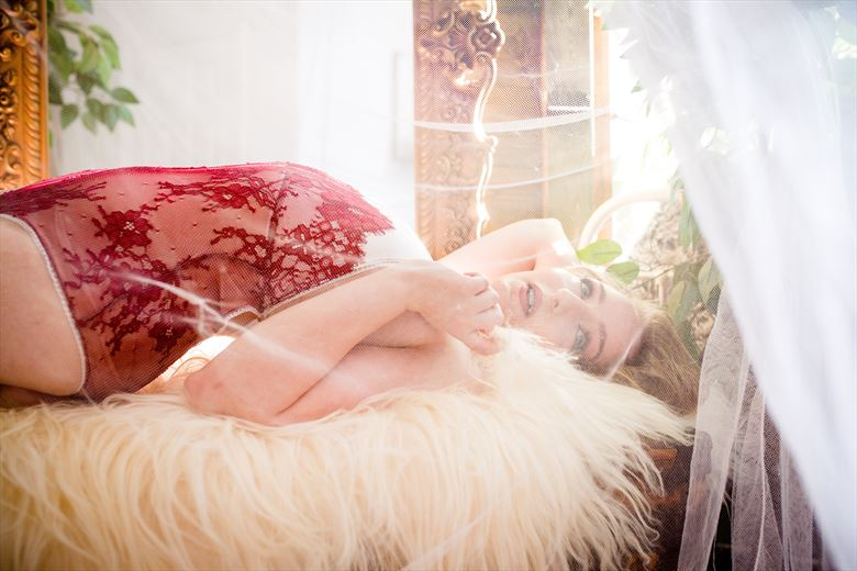 spotlight lingerie photo by model ophelia elysian