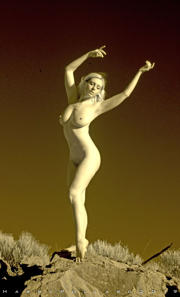 standing in last light artistic nude photo by photographer shootist