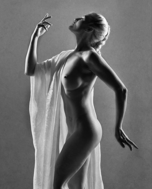statuesque 1 artistic nude photo by photographer colin dixon
