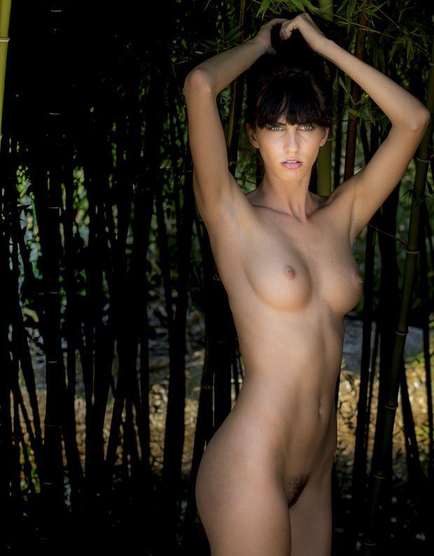 stephanie artistic nude photo by photographer evan