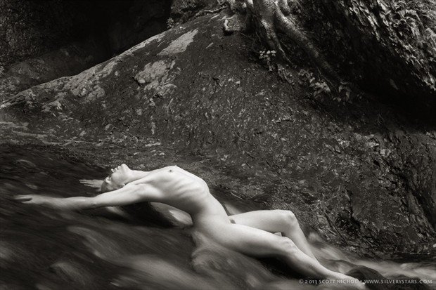 streaming Artistic Nude Photo by Model Stephanie Anne