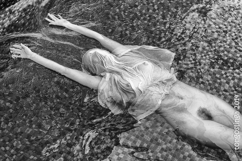 stretched Artistic Nude Photo by Photographer tongoslinga