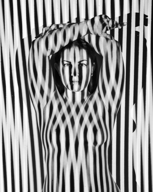 stripes artistic nude photo by photographer gregory holden