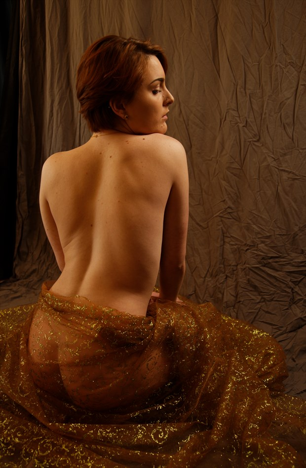 study with sparkly sheer fabric Artistic Nude Photo by Photographer Fred Scholpp Photo