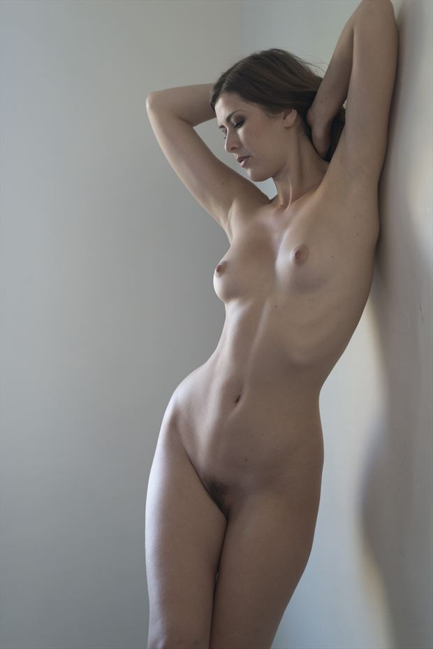 subtle and speechless artistic nude photo by photographer alan h bruce