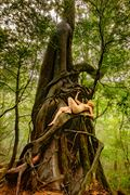 sugi goddess tree artistic nude photo by photographer treegirl