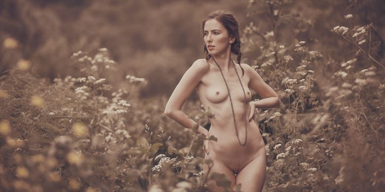 summer flowers artistic nude photo by photographer dml