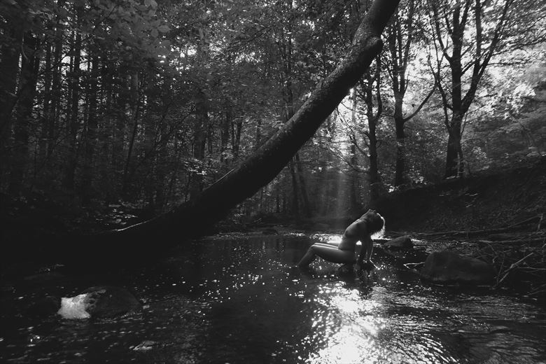 sunbathing artistic nude artwork by photographer lene damtoft