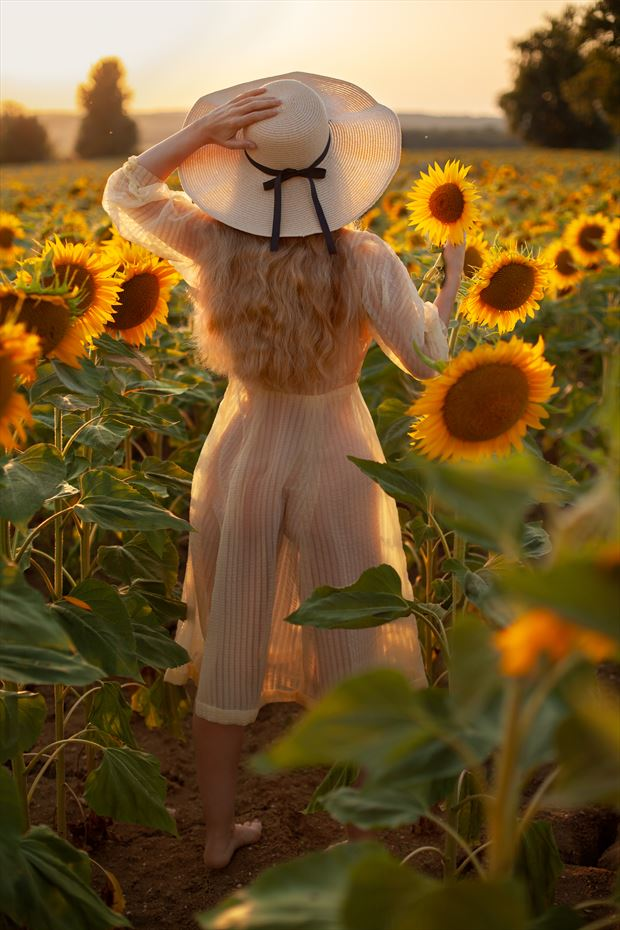 sunset in the sunflowers nature photo by model muse