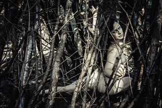 sunspeckled woods with aisling n%C3%AD cheallaigh artistic nude photo by photographer jymdarling