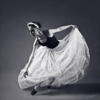 swan Studio Lighting Photo by Photographer Antonia Glaskova