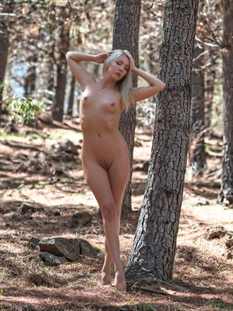 sylph sia chiseled forest beauty artistic nude photo by photographer pgl05