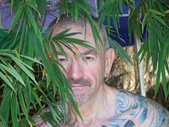 tattoos nature photo by model tattooed gentleman
