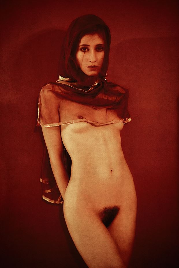 tear in red w kate snig artistic nude photo by photographer robin burch