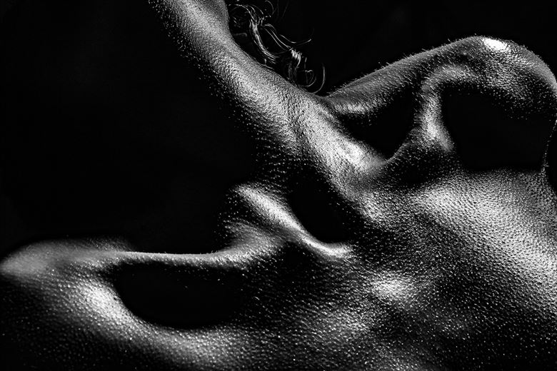 textures artistic nude artwork by photographer jerry d plunk ii