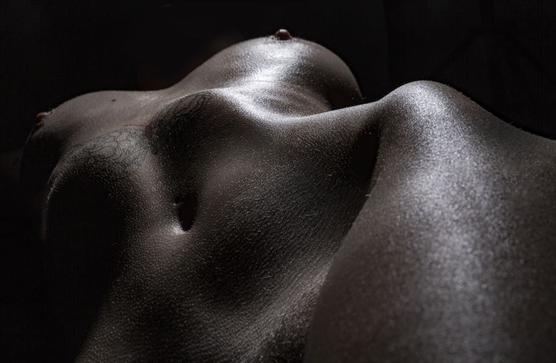 the bask artistic nude artwork by photographer jerry d plunk ii