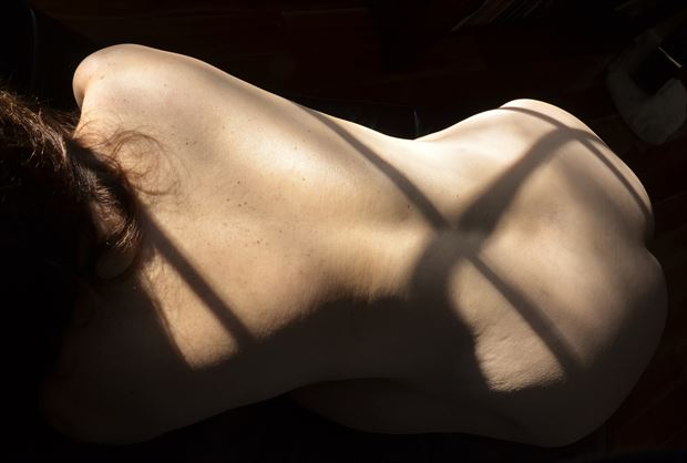 the beauty of sun artistic nude photo by photographer daylight evocation