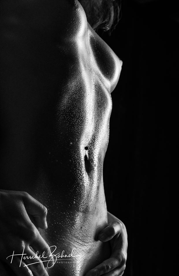 the body artistic nude photo by photographer zahndh23