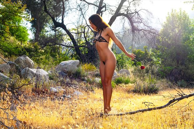 the desert rose artistic nude photo by artist muse evolution photo