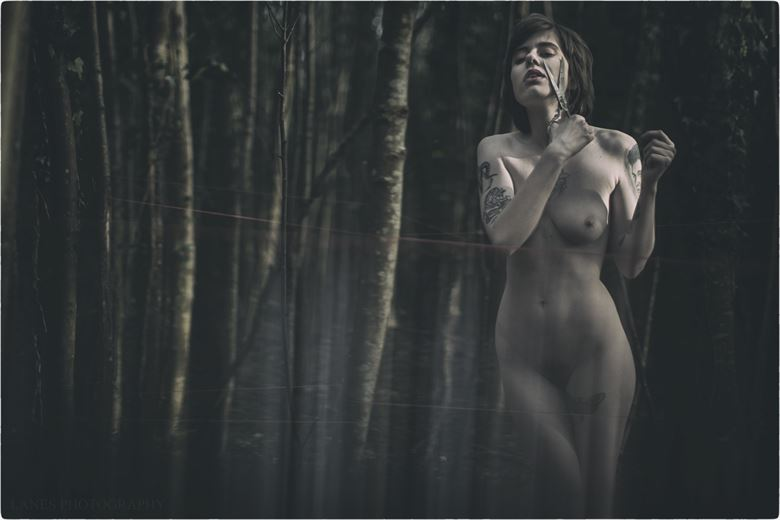the first cut artistic nude photo by photographer lanes photography