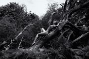 the forest 5 artistic nude photo by photographer benernst