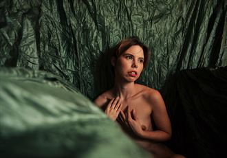 the green room artistic nude photo by model aferlysunflower