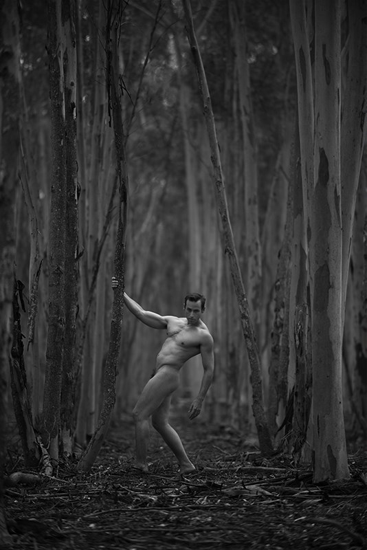 the gumtree plantation Artistic Nude Photo by Photographer Ross Spirou