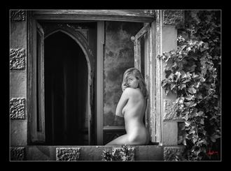 the mansion mistress artistic nude photo by photographer doug harding