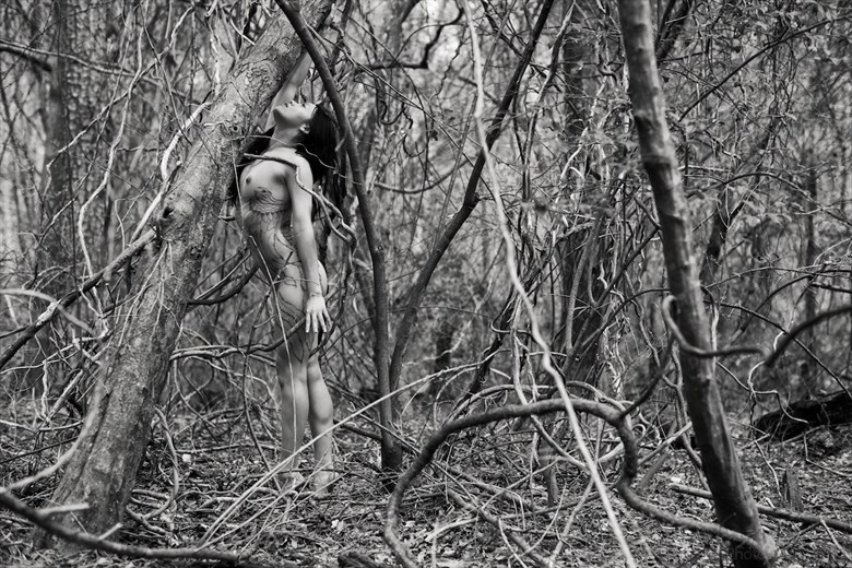 the risk it took to blossom (2015) Artistic Nude Photo by Photographer PhotoSmith