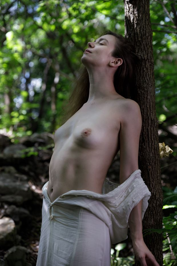the soul of the forest on the tree artistic nude photo by photographer claude frenette