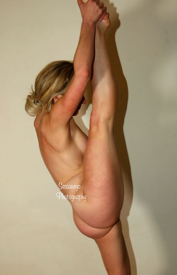 the stretch figureartmodel artistic nude photo by photographer alan james