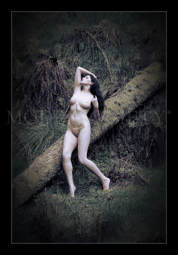 the woodcutter s wife artistic nude photo by photographer photorunner