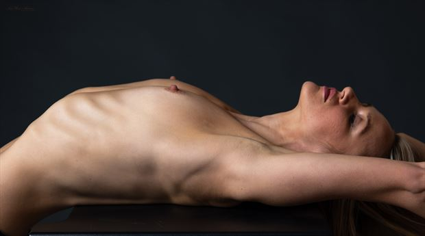topless pose artistic nude photo by photographer lamont s art works