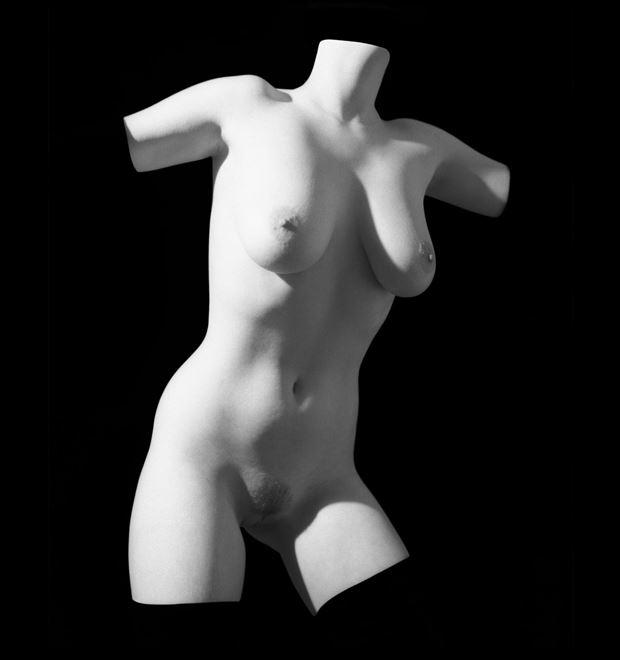 torso 86 artistic nude artwork by photographer arbeit photo hawaii
