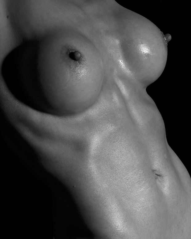 torso artistic nude photo by model t marie
