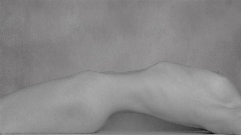 torso artistic nude photo by photographer andyd10