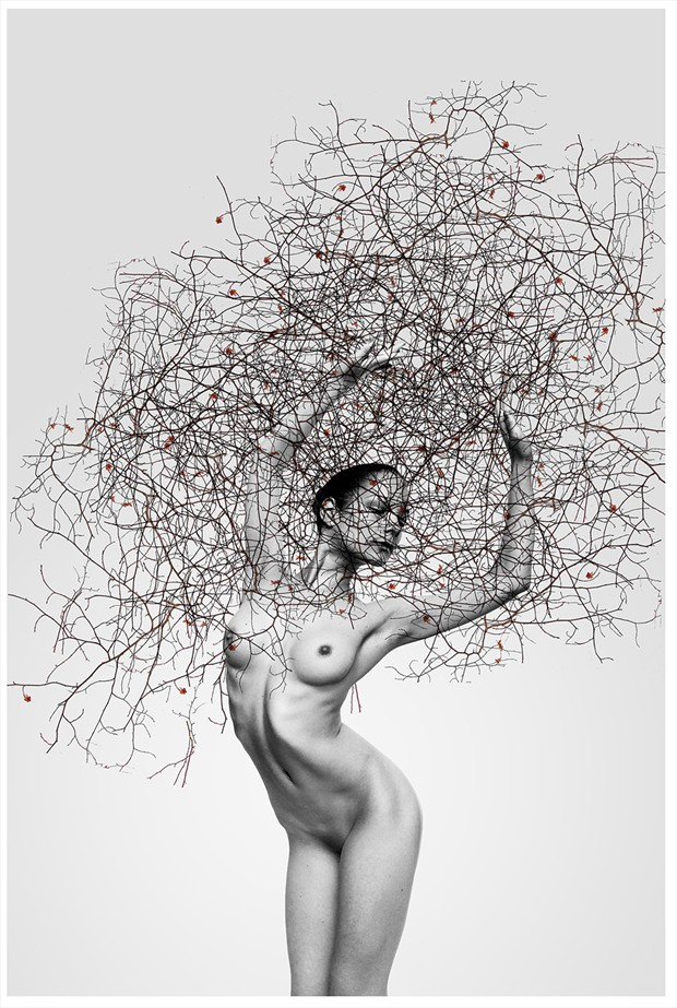 tree Artistic Nude Photo by Model vik tory